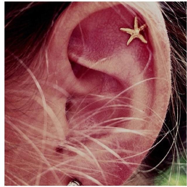Gimmeee: Cartilage Earrings, Style, Stars, Beautiful, Jewelry, Cartilage Piercing, Aquamarine, Ancillary, Starfish Earrings