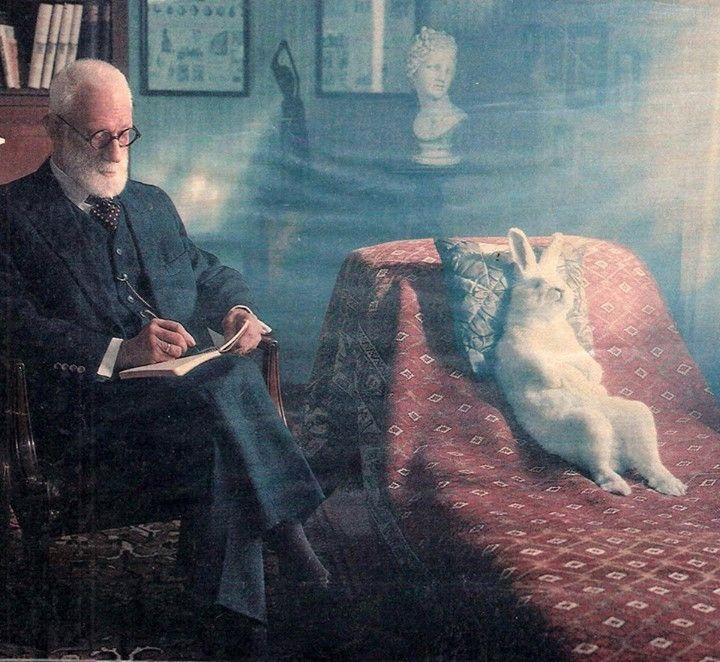 ▀ Freud