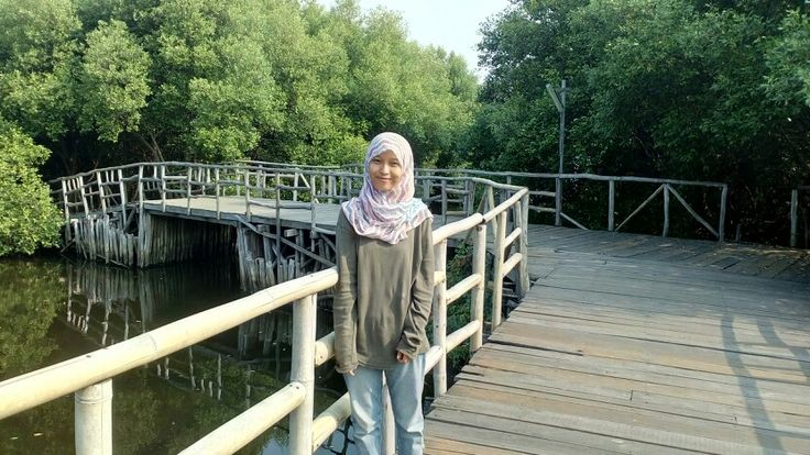 Mangrove forest *North Jakarta INDONESIA