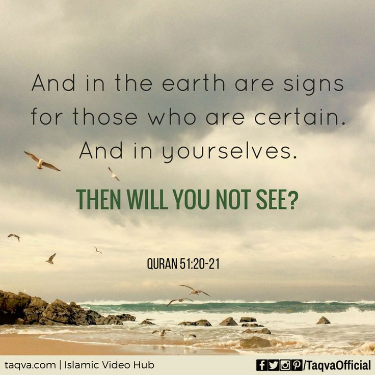 """""""And in the #earth are signs for those who are certain. And in yourselves. Then…"""
