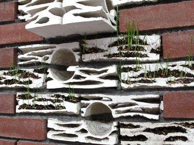 "Hand-Sculpted ""Brick Biotopes"" Turn Brick Walls Into Wildlife Habitats (Video)"