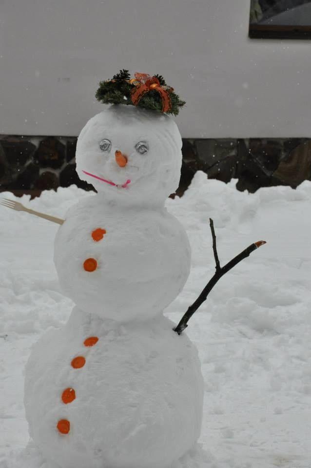 iarna bootcamp