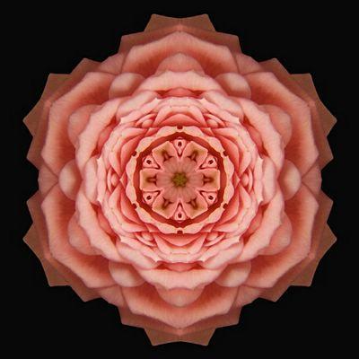 18 Best Images About Mandalas On Pinterest