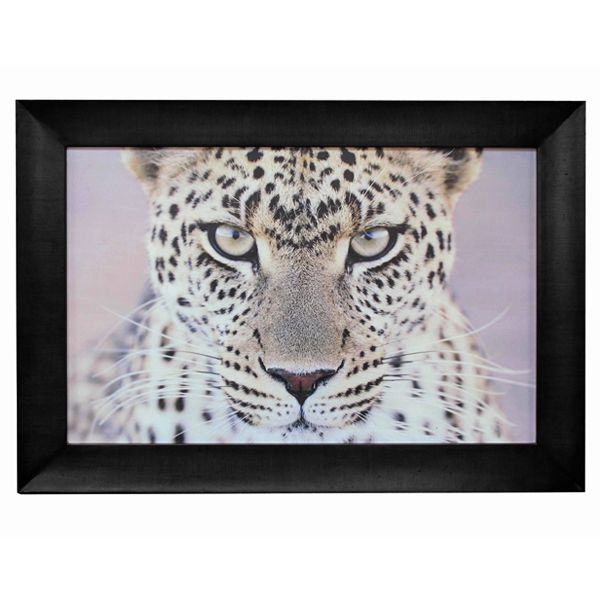 Leopard Portrait Wall Art http://strutliving.com.au/wall-art/532-leopard-portrait-wall-art.html