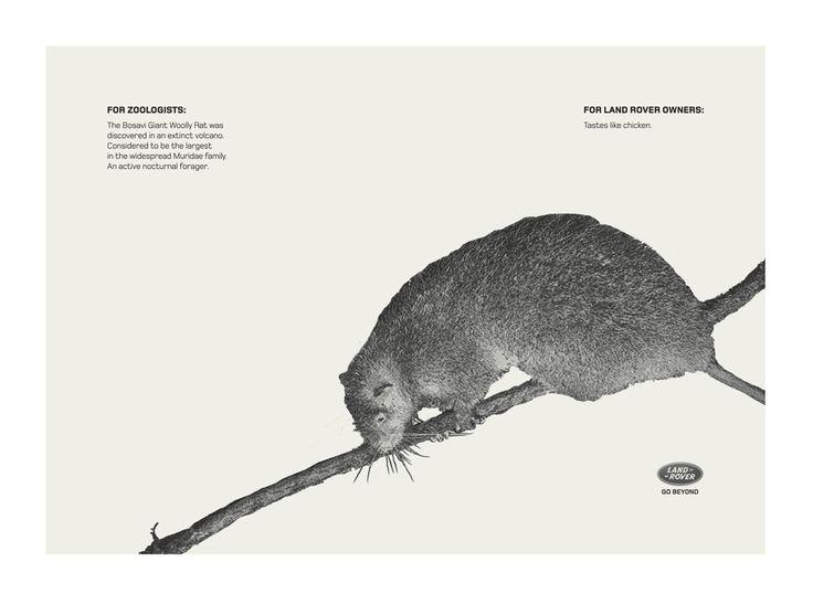 Campaign: Rare: Bosavi Giant Woolly Rat / Advertiser: Land Rover / Agency: Y Dubai / Country: UAE / Creative Director: Shahir Zag & Kalpesh Patankar / Art Director: Kalpesh Patankar / Award: Copywriting Cristal