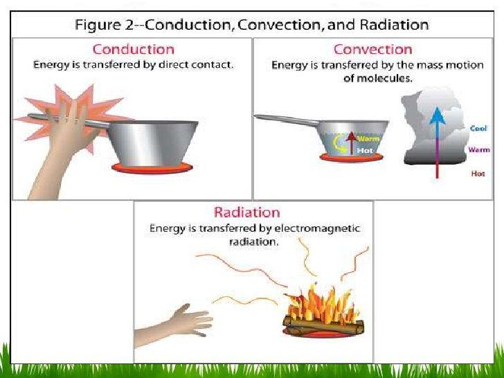 Biofisica De La Termorregulacion En 2020 Clases De Fisica Calor Fisica Calor Y Temperatura