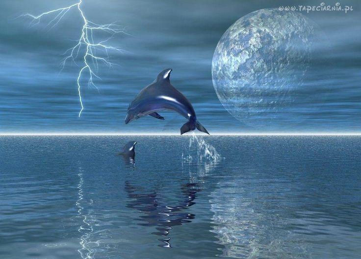 Delfin, Planeta, Burza, Błyskawica, Piorun, Morze