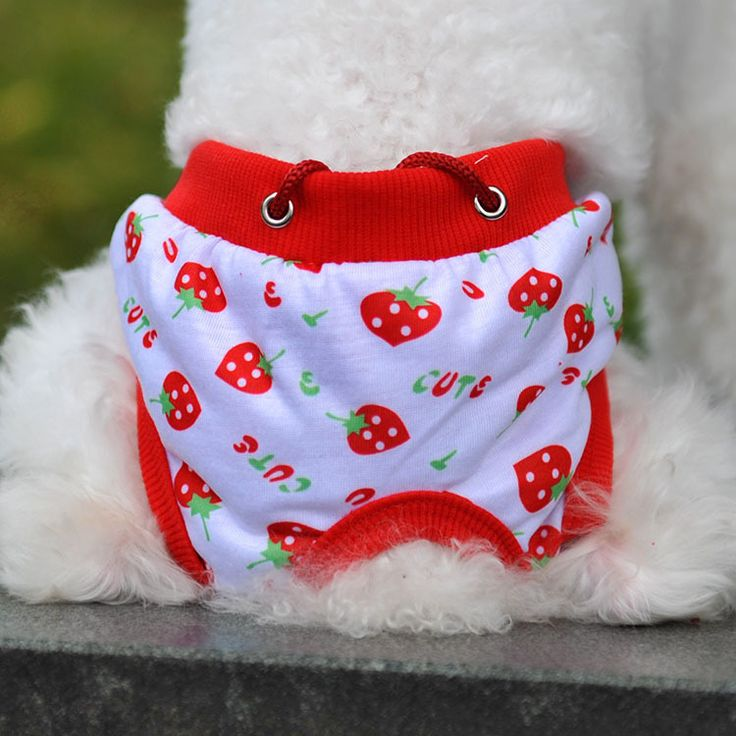 Fashion Kawaii Pet Puppy Cotton Tighten Strap Briefs Sanitary Pet Dog Underwear Diapers Physiological Pants Free