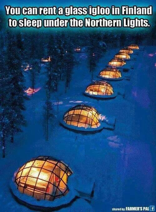 Bucket list...I want to do this in Alaska:) im from Alaska and ive never done that! looks awesome