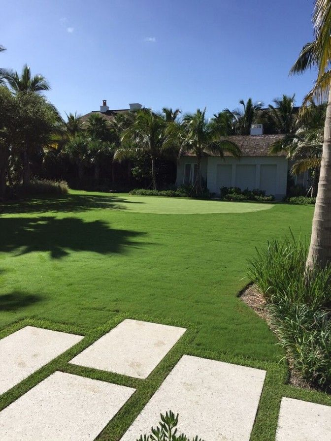 Landscaping With Bermuda Grass : Best ideas about bermuda grass on