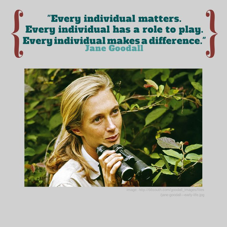 Jane Goodall Quotes: 1000+ Images About Quotes From Famous Nerds On Pinterest