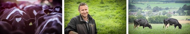 Westmorland Supports Local Family Farm with Milk Contract http://www.cumbriacrack.com/wp-content/uploads/2017/03/Phil-Harrington-dairy-farmer-at-Mounsey-Bank-Farm-and-his-herd.png The Westmorland Family, who own and operate Tebay Services, have partnered with a local Cumbrian family farm to find a single source of farm assured milk    http://www.cumbriacrack.com/2017/03/08/westmorland-supports-local-family-farm-milk-contract/