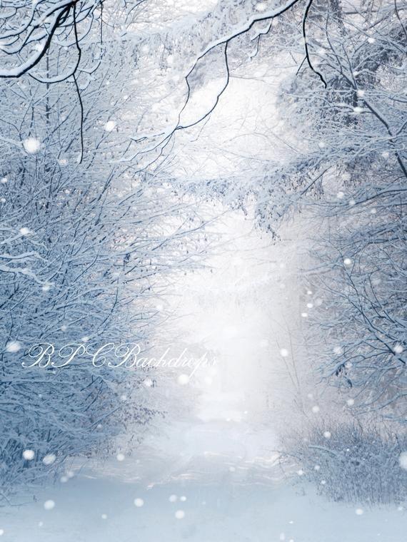 Portrait Digital Download Fir Tree Winter Wonderland Backdrop Snow Backdrop Photography Backdrop Winter Background