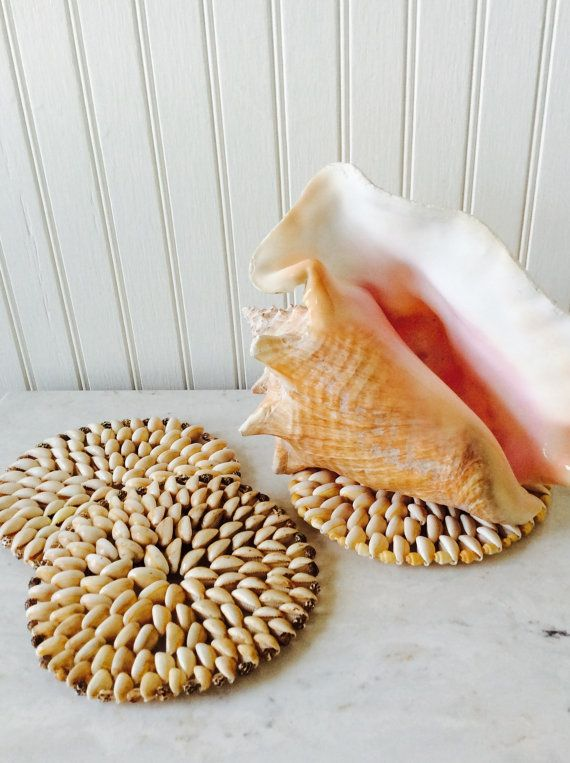 This is a sweet set of 3 seashell trivets. I have two sets of three in shop, convo if you want all six for reduced shipping cost! All are the same size , but one is a slightly different color, see pictures. Great for placing under small to medium size planters. Helps to save furniture from scratching, plus looks great doing so. Adds that coastal beach look to any room! All are in good vintage condition, one is missing one shell, hardly noticeable. Measures each 6 diameter 🌴🌴🌴 ( 2nd set…