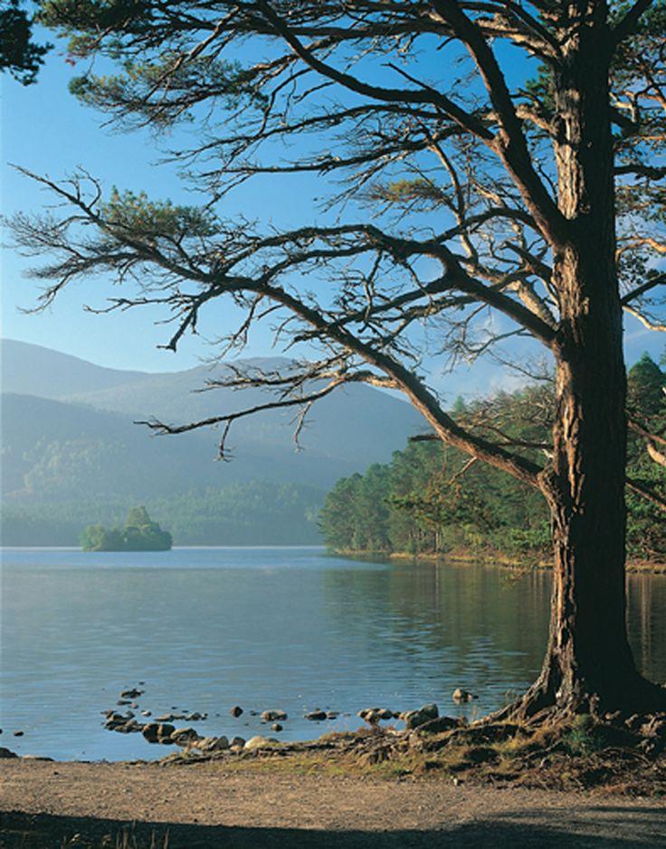 Loch an Eilein, Rothiemurchus, Scotland.