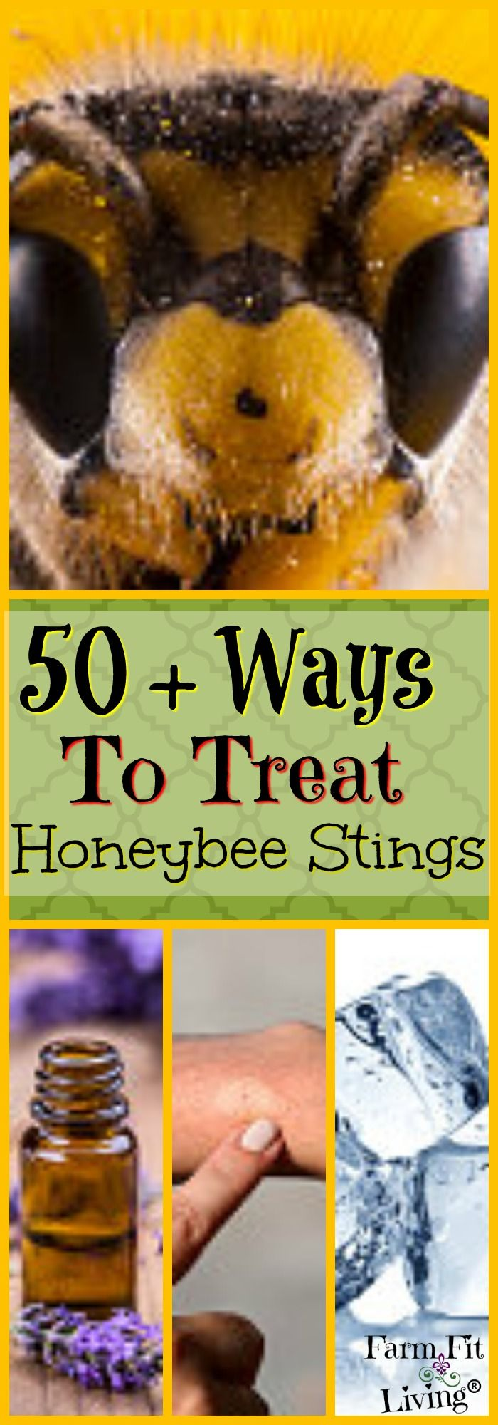 Did you get stung by a bee? Here are 50+ ways to treat honeybee stings from over 100 beekeepers. via @www.pinterest.com/farmfitliving