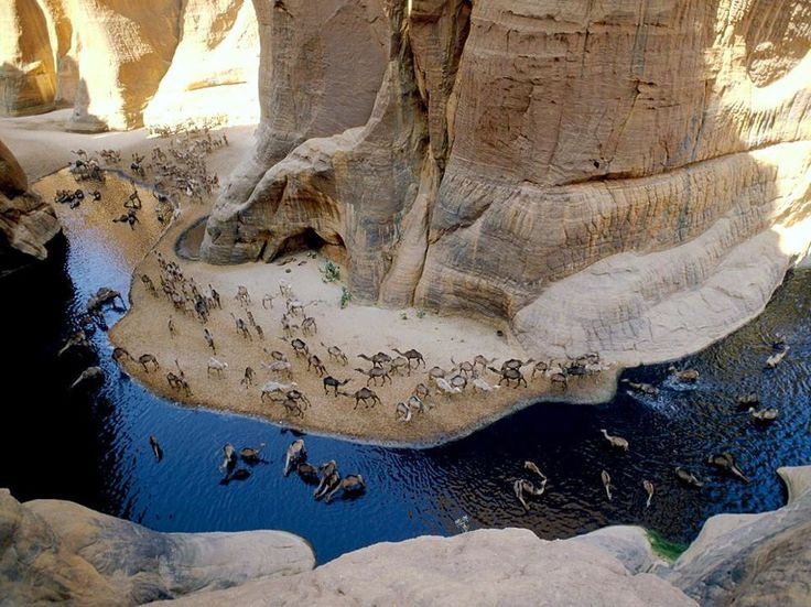 The Archei Oasis in Chad in northern Africa. Photograph by George Steinmetz From National Geographic