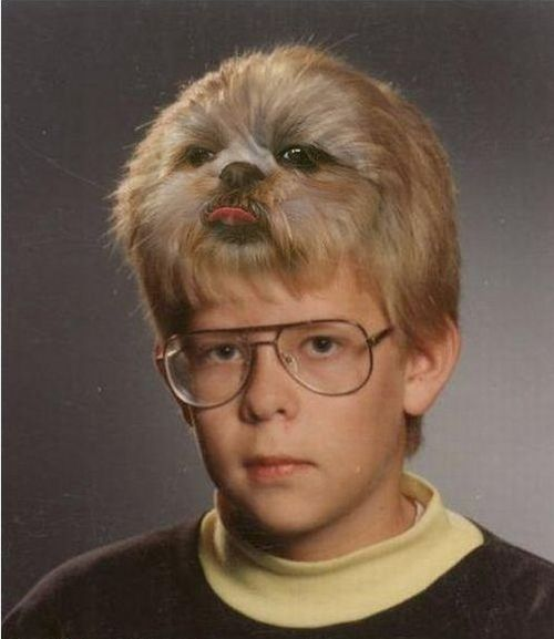 13 Weird Haircuts You Need To Try Before You Die – The Awesome Daily - Your daily dose of awesome