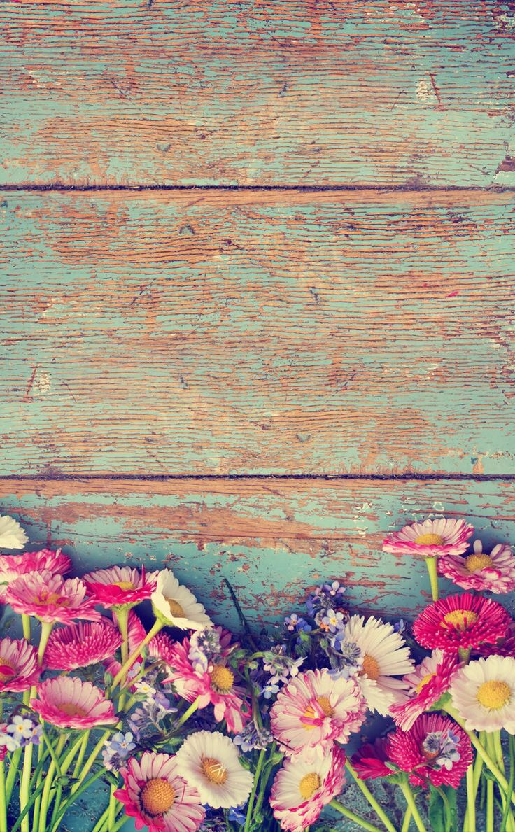 wood vintage paint floral shabby chic iPhone Wallpaper background