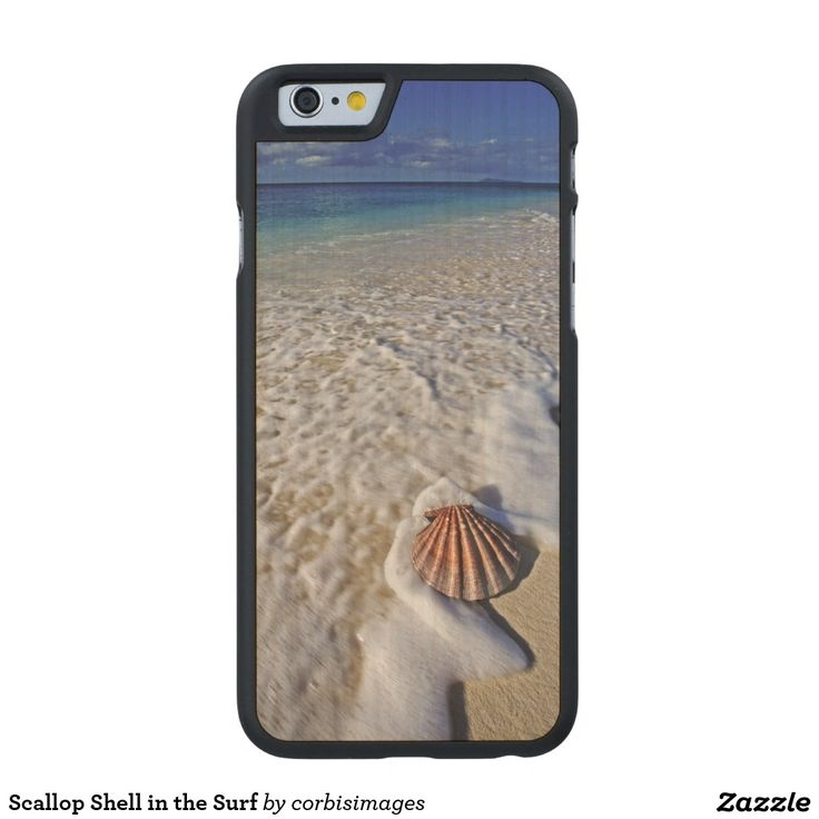 Scallop Shell in the Surf Carved® Maple iPhone 6 Case