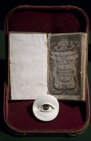 Ivory and horn anatomical model of the eye, Italy, 1674