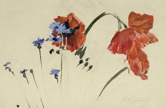 Stanisław Wyspiański (Polish, 1869-1907), Wild Flowers, 1893. Watercolor and pencil on paper, 20.7 x 31.5 cm.