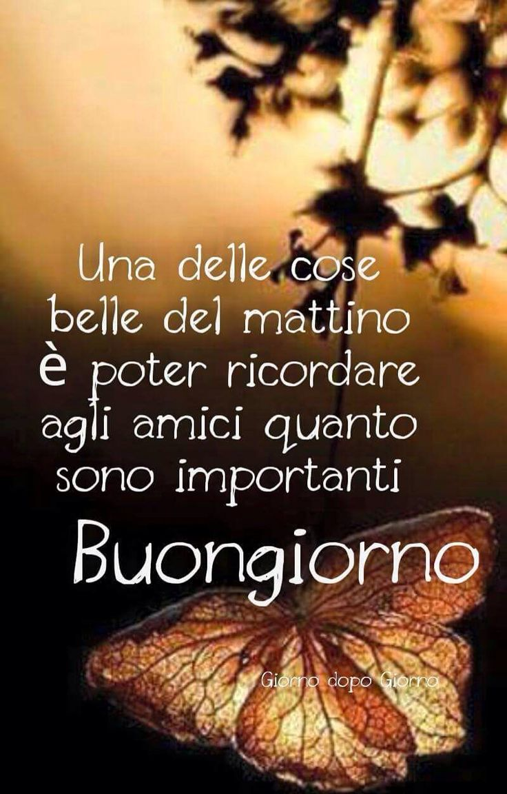 191 best images about buongiorno on pinterest reasons to for Immagini buongiorno divertentissime