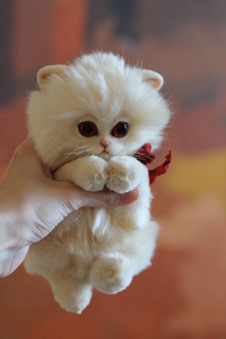 Albino Kitten By Irentoys Cute Baby Animals Cute Little Animals Cute Animals