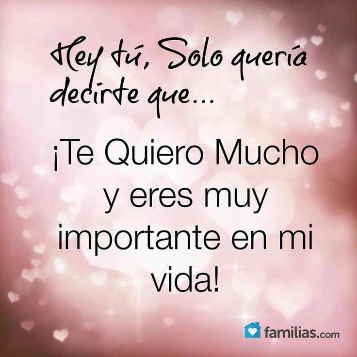 ¡Solo quiero decirte que te quiero mucho y eres importante en mi vida!
