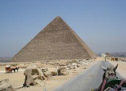 Pyramid, Giza, Egypt, Horse, Wagon