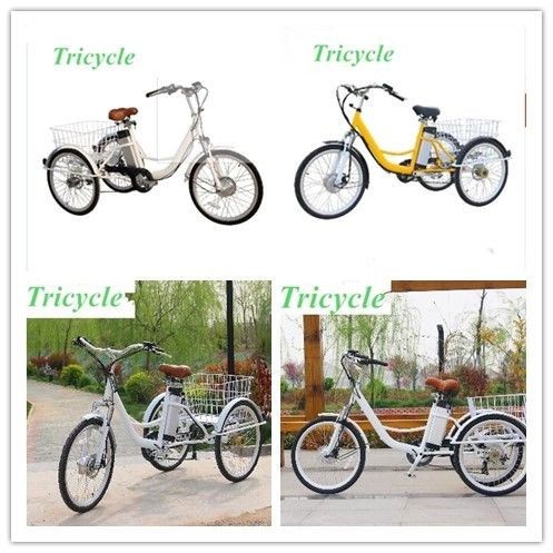 24inch cheap electric trike for adults 250W/36V electric rickshaw 3 wheel electric bicycle for sale electric tricycle scooter