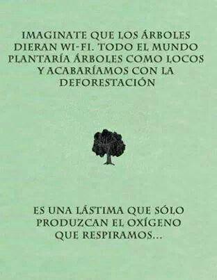 Wi-fi (Spanish)
