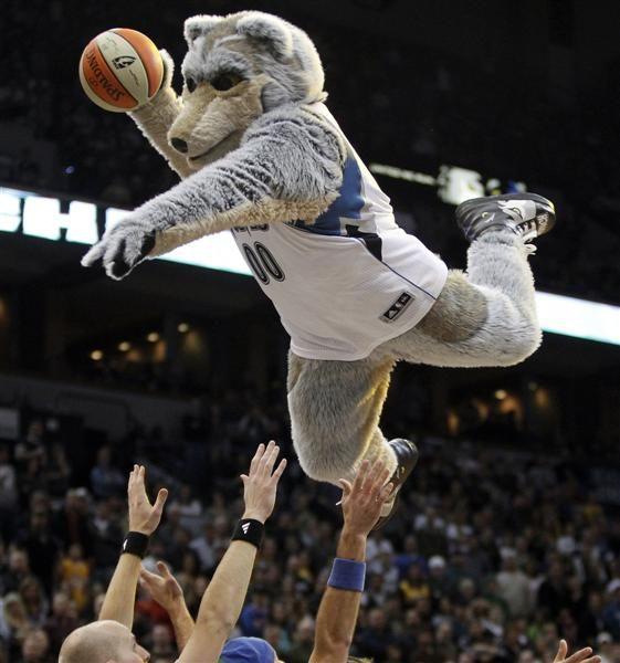 Blazers Mascot: 66 Best Images About NBA Mascots On Pinterest