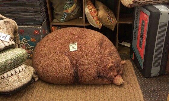 Grisly bear bean bag. Dare you sit on a sleeping bear?