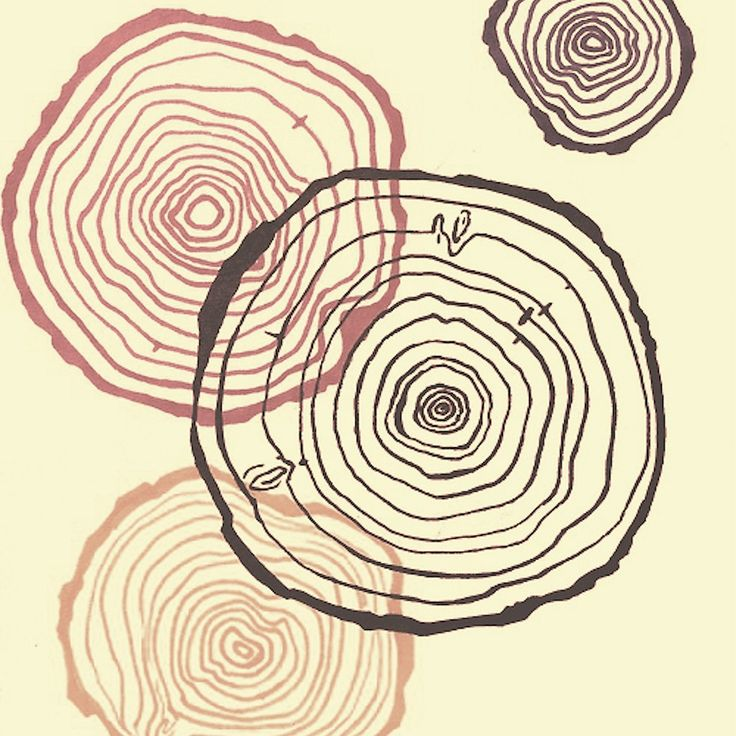 Growth Rings.