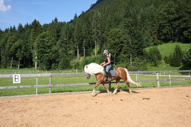Reiten lernen im Urlaub   Famiilien-Hotel Krone im Allgäu