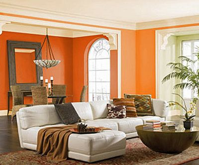 colour combination for walls of living room 25 best ideas about orange walls on orange 27965