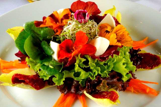 Artigo da floricultura online Giuliana Flores traz curiosidades sobre o uso de plantas como rosas e tulipas. Veja também algumas receitas.