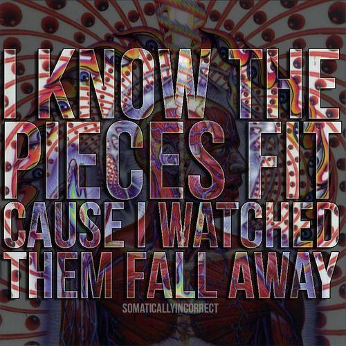 Tool - Schism - I know the pieces fit #lyrics