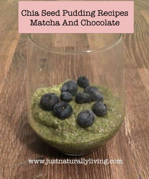 Chia Seeds are so good for you! They have many health benefits. Try these two chia seed pudding recipes.