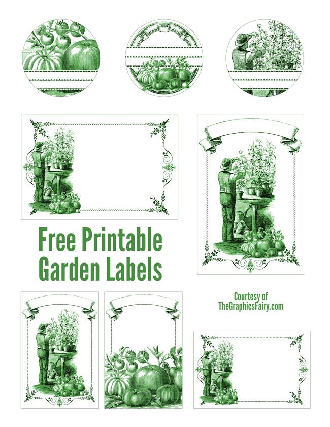 Garden Mason Jar Labels   //  The Graphics Fairy - These fabulous tags/labels can be printed in green or black and there are individual versions of all, so you can print just your favorites. All of Emily's labels are just gorgeous!
