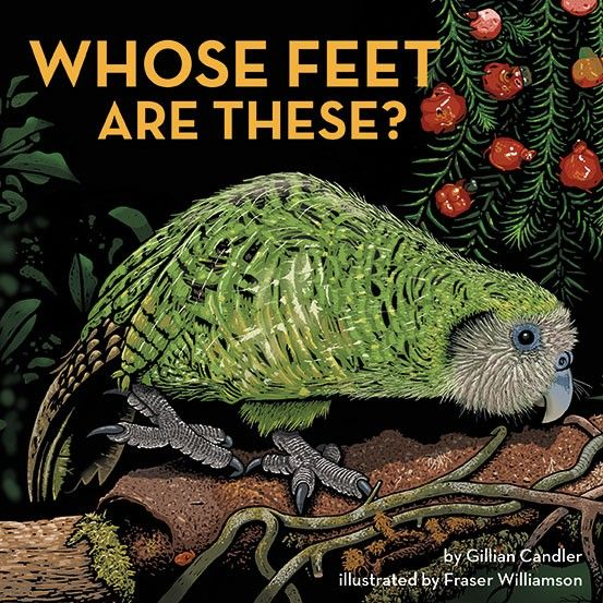 Whose Feet are These? by Gillian Candler, illustrated by Fraser Williamson