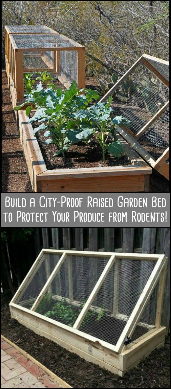 Gardening Tips And Strategies That Are Easy To Follow Building A