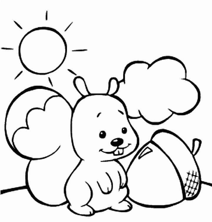 Desenho De Esquilo Para Colorir E Pintar Paginas Para Colorir