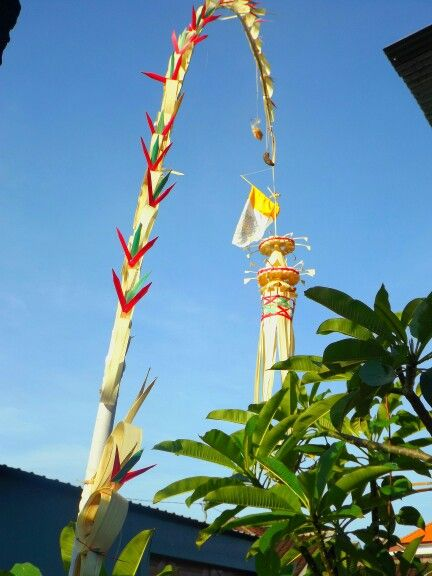 Penjor, religious symbolic decoration on Balinese Hinduism. Its put on every entrance of the house during Galungan Festive or during any temple ceremony
