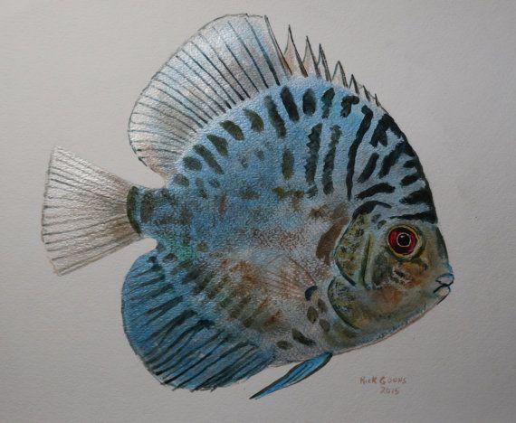 Discus Fish (original painting) Aquarium art, Discus fish painting, aqurium wall art, tropical fish painting.