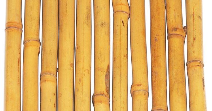 Partes e usos da árvore do bambu. A árvore de bambu é, na verdade, a maior de todas as espécies de grama. Ela é encontrada em diversos tipos de clima e em países de todo o mundo, incluindo China, Austrália, Estados Unidos, Argentina e Índia. Existem várias utilidades para todas as partes da árvore de bambu.