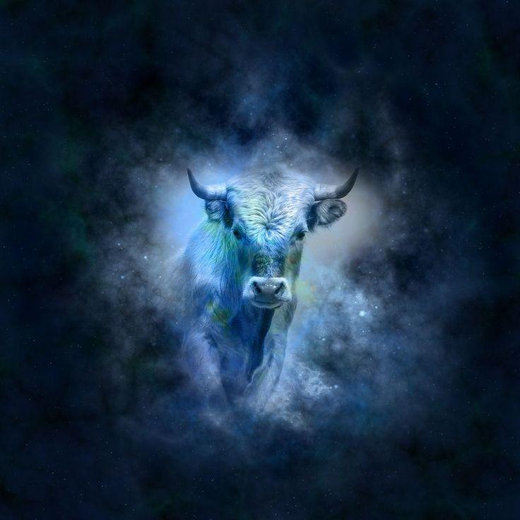 Le Taureau est plein de sensualité, de force et de sincérité. Ce signe aime la tranquillité, la sécurité matérielle et morale, vivre en communion avec la