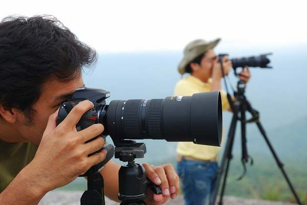 Career In Photography | Choose Wildlife Photography As Your Career :- http://recruitmentinbox.in/career-in-photography/17831/
