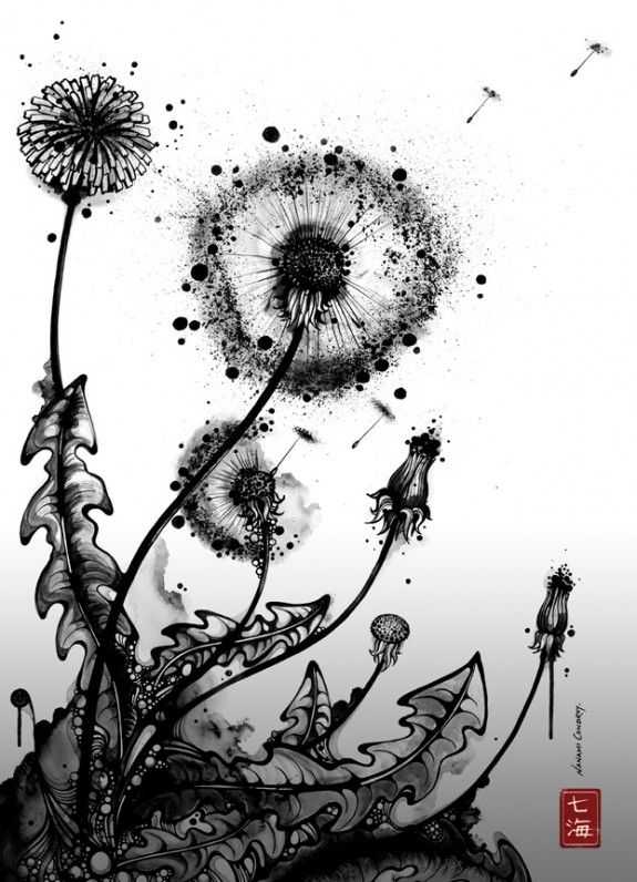 Nanami Cowdroy - I like the contrast between the bold outlines and shadows on the leaves with the fine, splattered effect of the dandelion.